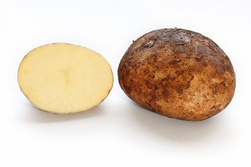 800px-potato_and_cross_section