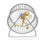 Ekorrhjul