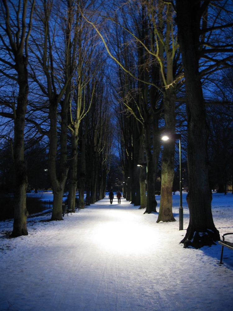 vinter-1-6